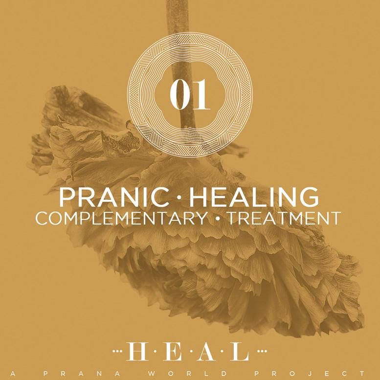 Pranic Healing Item