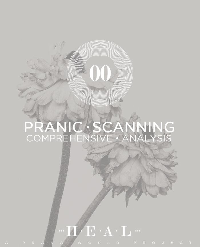 Pranic Scanning